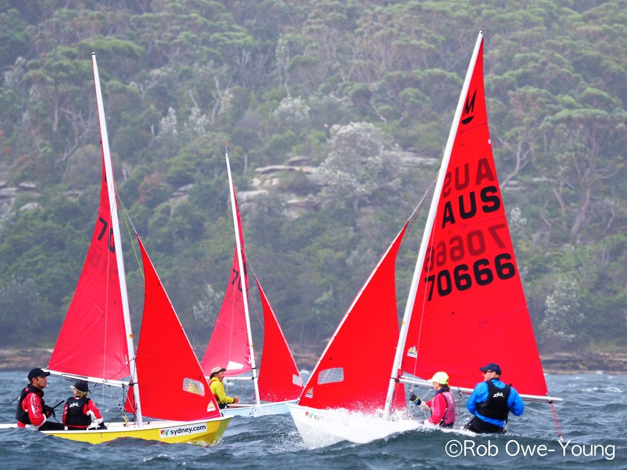 regatta scene